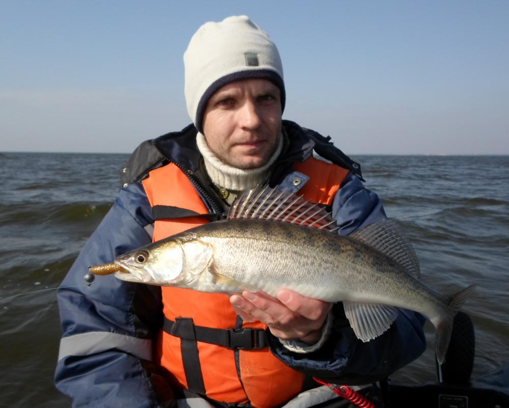 рыбалка в калининграде с берега