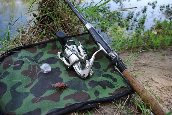 ловля голавля на хруща