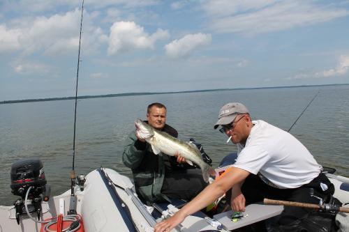 ловля рыбы судака с лодки